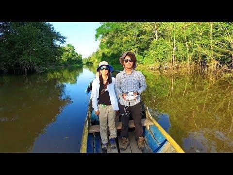 The Amazon Rainforest | Short Dronie (Selfie+Drone) Film