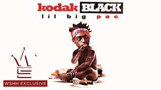 "Kodak Black ""Vibin In This Bih"" Feat. Gucci Mane (WSHH Exclusive - Official Audio)"