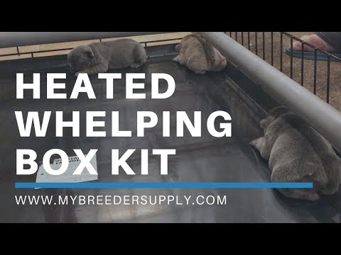 Heated Whelping Box Kit