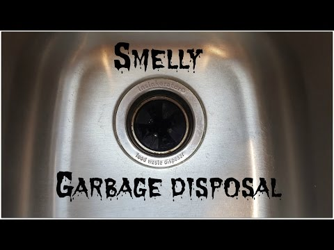 DIY Clean And Freshen Your Garbage Disposal