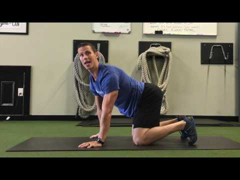 Shoulder and Spine Health