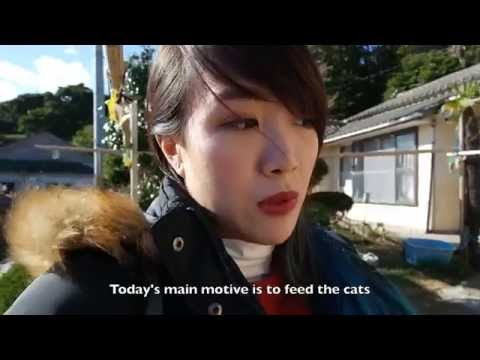Tashirojima Cat Island! - Travellymoky