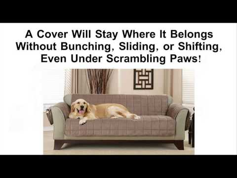 Best Pet Furniture Covers - Protect Your Couch or Sofa