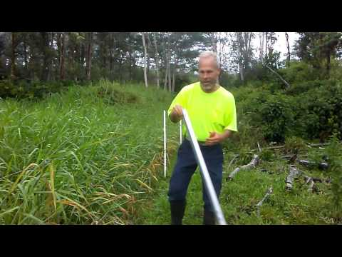 Why a weed won't short out your Electric Fence