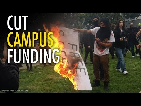 Want to improve higher education? Cut public funding
