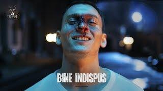 The Motans - Bine Indispus | Videoclip Oficial
