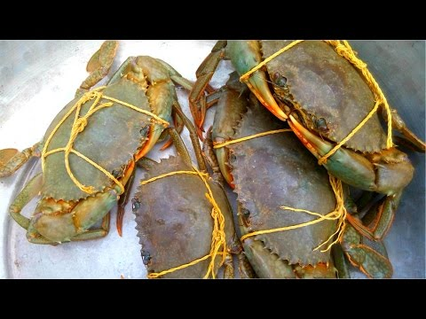 How To Cook Mud Crab Village Style || Catch And Cook Crab || Awesome Crab Recipe || Must Watch Video
