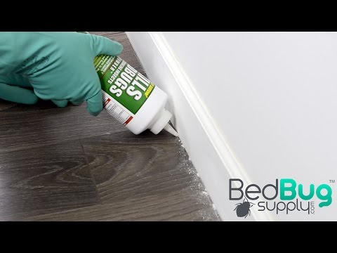 How to Use Bed Bug Powders