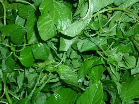 Thandu keerai kadaiyal    Thandu keerai  masiyal   கீரை மசியல்   Spinach Gravy