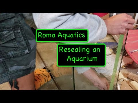 How To Reseal an Aquarium - From Drab to Fab - 55 Gallon Tank Reseal & Aquascape  🆒