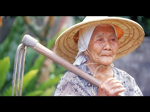 Why Okinawans Live So Long: Diet, Lifestyle, Genetics, Environment
