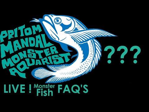 Live! Monster Fish FAQ'S