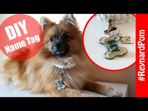 DIY - Dog Collar Name Tag (Shrinking Film)