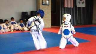 Awesome Taekwondo Sparring match - My 3 year old son on blue helmet