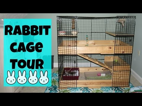 Rabbit Cage Tour | Fins and Paws
