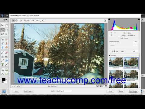 Photoshop Elements 2019 Tutorial Camera Raw Treatments and Profiles Adobe Training