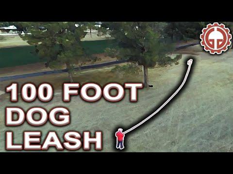 100 Foot Dog Leash