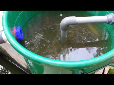 How to build Pond water Filter ! DIY
