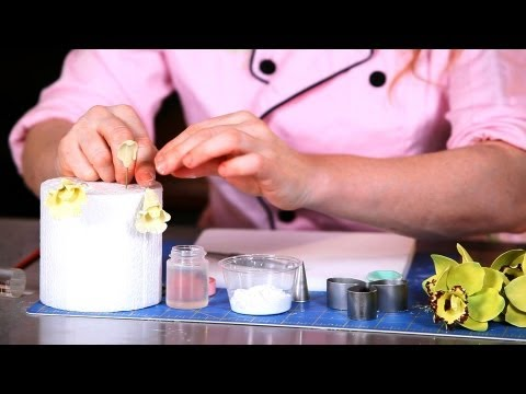 How to Add Outer Labellum to Orchid | Sugar Flowers