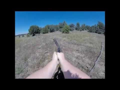 Smith & Wesson .38 Special VS Padlock