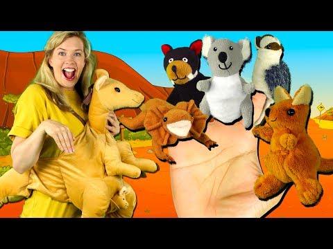 Australian Animals Finger Family Song | Finger Family Nursery Rhymes