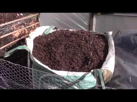 (58) Making Leaf Mold