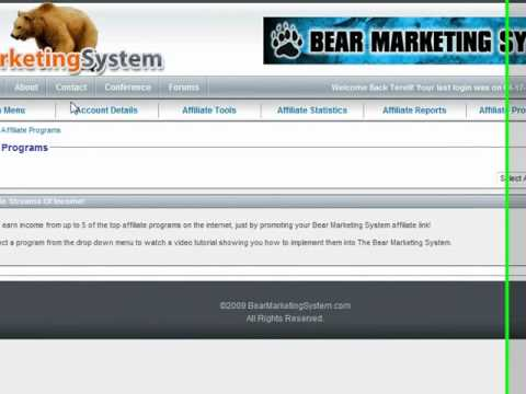 The Bear Marketing System Proof #1