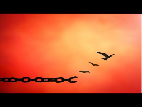 Forgiveness Guided Meditation - Forgive others, forgive yourself By Jason Stephenson