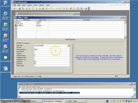 Microsoft Access 2003 - Creating data tables