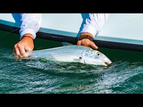 Bonefishing the Islamorada Flats in the Florida Keys