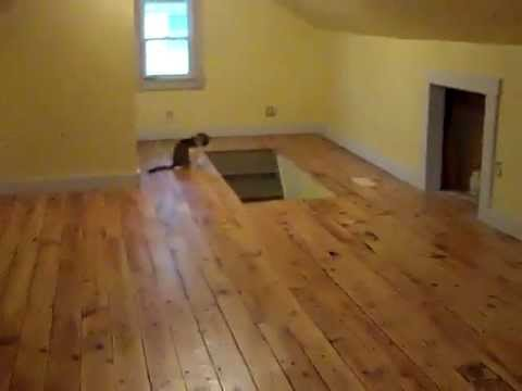 Attic Remodel - 100 Year Old Floor Refinished - Hurley NY