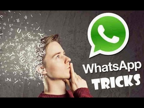 Windows Phone Tips and Tricks   How To Activate WhatsApp Web