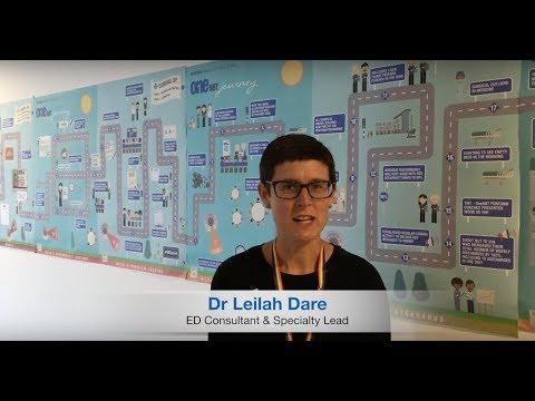 Dr Leilah Dare - OneNBT Coach video