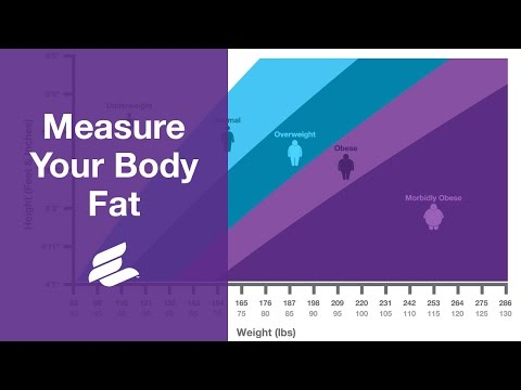 Measure Your Body Fat Using Body Mass Index