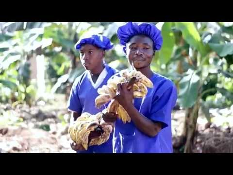 Harmony Banana Juice in Uganda