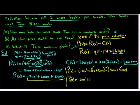 Calculus Optimization Maximum Profit with Price Reductions