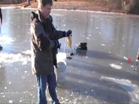 Ice Fishing Bluegill, Bass and Catfish