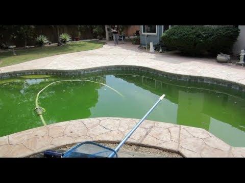 How to Fix a Green Algae Filled Salt Water Pool!!!