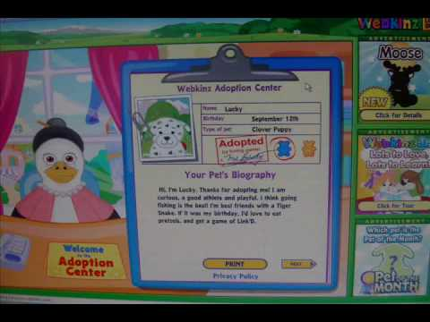 The first Webkinz Clover Puppy ever adopted!