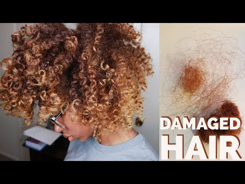 How to Do a Protein Treatment to Repair Bleached Natural Hair (4B/4C) | MEGSHOUSE