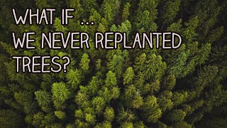 What If We Never Replanted Trees?