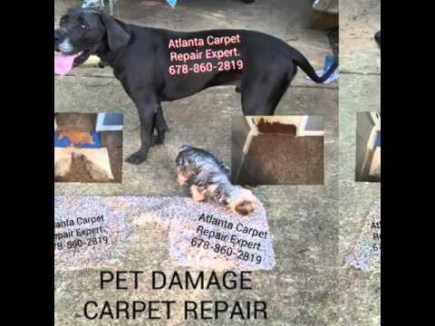 Pet Damaged Carpet Repair Atlanta, Ga 4/9/16