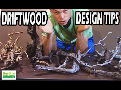 Aquarium Driftwood Design Tips, Playing with Driftwood in you Planted Aquarium