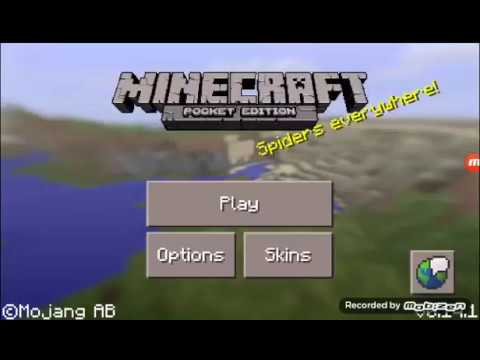 Minecraft PE - How To Name A Villager Or Pets!