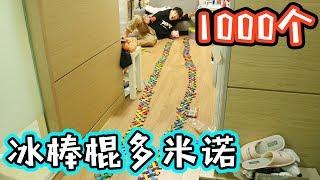 冰棒棍飛飛飛!!挑戰1000個冰棒棍多米諾!還有會飛的多米諾??| 伶可兄弟