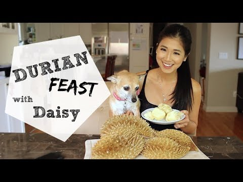 How To EASILY Open Durian
