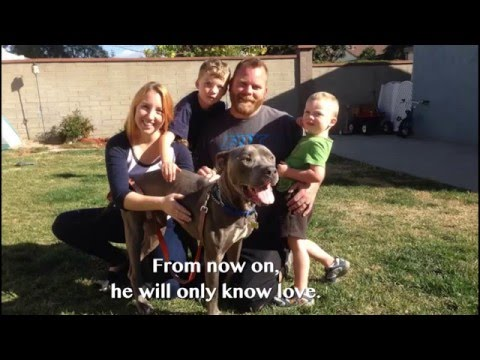 Spirit is Adopted!