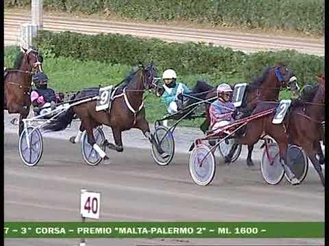 III   CORSA Premio MALTA PALERMO II^ Batteria