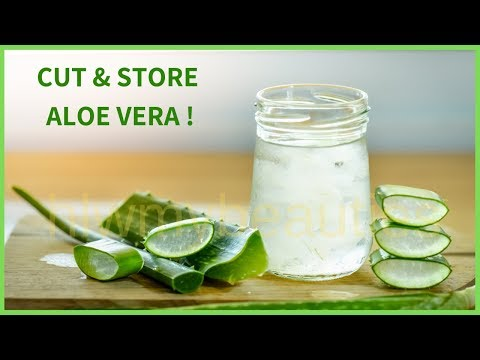 How to store aloe vera leaf