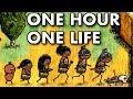 SIMULADOR DA VIDA REAL! ONE HOUR ONE LIFE